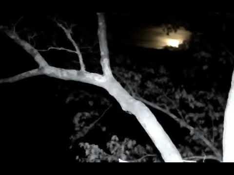 DHEC, Super Moon Rising Over DH, 120317