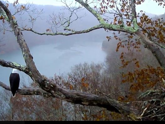 Beautiful screenshot from the last morning of November 2018. Watch Twin Lakes TV…